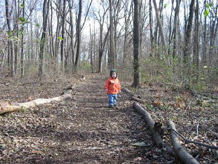 A toddler in an orange coat wandering down a forest path.